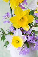 Cut flowers in spring Narcissus daffodil bulbs and Cardamine purple flowers, bouquet of cutflower bunch with spring blooming bulbs and perennials arrangement