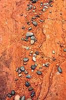 As the Colorado River slowly carved into the layers of sandstone, mudstone, and shale of the Glen Canyon area, it deposited river cobblestones on benches left behind as the course of the river continued its slow progress of eroding its channel. Above the rim of Glen Canyon, a sandstone bench displays these cobblestones in sharp contrast to the vermilion color of the Navajo Sandstone.