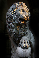 Detail of sculpture of Lion, 1600, by Flaminio Vacca or Vacchi (1538-1605), Florence, Italy, pictured on 9 June 2007 lit by the late afternoon sun. The lion was made to match a Roman sculpture which originally stood by the staircase at the Villa Medici. When the Villa was sold by the Grand Duke of Tuscany the lions were moved to the Piazza della Signoria, Florence, where they flank the steps to the Loggia dei Lanzi. Picture by Manuel Cohen