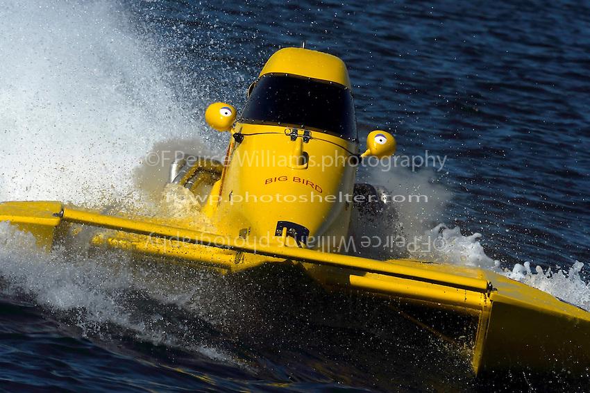 "Thom Heins, NM-30 ""Pennzoil Big Bird"" (National Mod class hydroplane)"