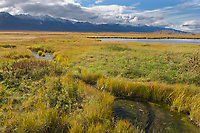 Wetland and marsh area at Pilgrim Springs, Seward Peninsula, overlooking a view to the south of the Kigluaik mountains.