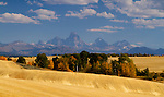 Idaho, Eastern, Teton Valley. Grand Teton Range on an autumn day looking over the harvested wheat fields near Tetonia.