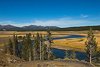 Yellowstone River winding its way through Hayden Valley.