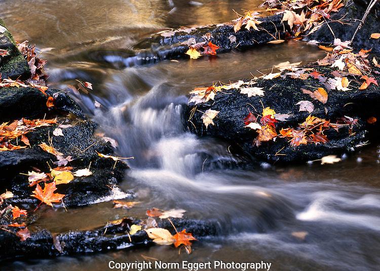 A small stream runs over the rocks in Brooks Woodland Preserve in Petersham, MA