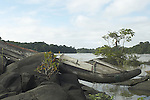 Dugout canoe wrecked by rapids on the Marowijne River, Suriname.