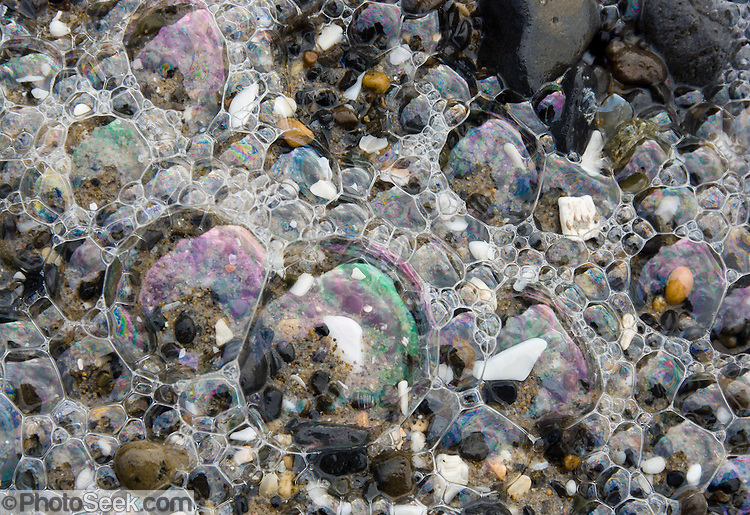 Shiny iridescent sea foam bubbles, Oceanside beach, Oregon, USA ...
