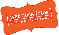 Wet Nose Fotos - Pet Photography
