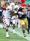 Aug. 31, 2013; Notre Dame running back Amir Carlisle gets pushed out of bounds after gaining long yardage against Temple.Photo by Barbara Johnston/University of Notre Dame