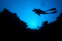 Diver Silhouette<br /> Vertigo in Annaly Bay<br /> St. Croix, US Virgin Islands