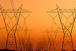 Rows of silhouetted powerlines stretching off into the distance at sunset,