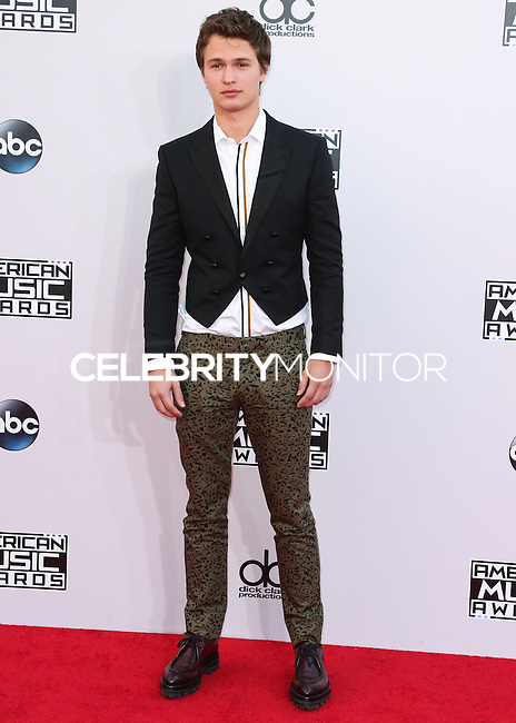 LOS ANGELES, CA, USA - NOVEMBER 23: Ansel Elgort arrives at the 2014 American Music Awards held at Nokia Theatre L.A. Live on November 23, 2014 in Los Angeles, California, United States. (Photo by Xavier Collin/Celebrity Monitor)