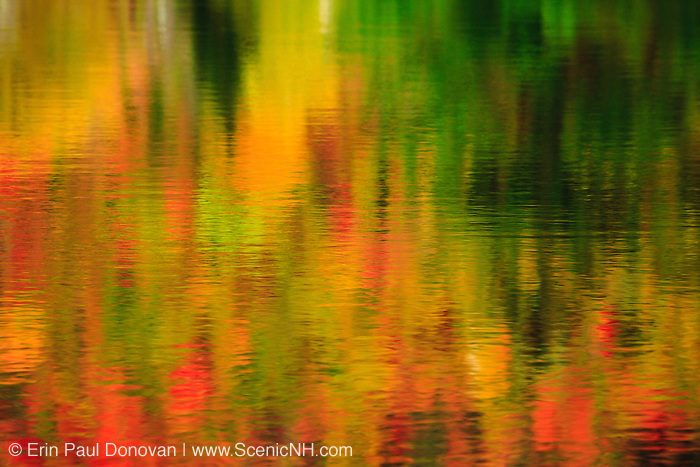 Reflection of autumn foliage in Wildlife Pond in Bethlehem, New Hampshire USA during the autumn months.