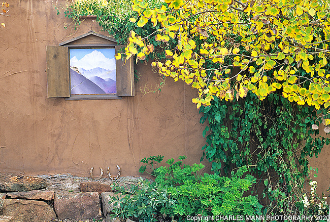 Santa Fe gardener Suzanne Crayson created a fun teaser by installing small nichos in her adobe wall and painting exotic scenes inside.