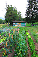 The traditional apiary is located in the garden on the Blumenstein farm in Alsace.