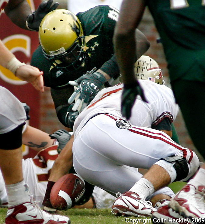 TALLAHASSEE, FL 9/26/09-FSU-USF FB09 CH08-Florida State's Christian Ponder fumbles as he is sacked by South Florida's Jason Pierre-Paul during fourth quarter action Saturday at Doak Campbell Stadium in Tallahassee. The Bulls beat the Seminoles 17-7...COLIN HACKLEY PHOTO