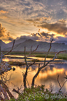 Sunset reflections on Kawainui Marsh