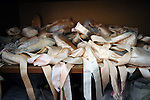 Used pointes filled the cupboard in the rom of Joy Womack, an American student at the Moscow State Academy of Choreography, the main school feeding dancers to the Bolshoi Ballet and one of the top ballet schools in the world. Moscow, Russia, March 10, 2010