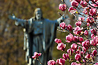 Sacred Heart Jesus statue on main quad..Photo by Matt Cashore/University of Notre Dame