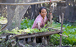 Sath Sopha works in her garden in the Cambodian village of Solang Kandal.