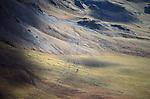 Caribou migration tracks, Alaska