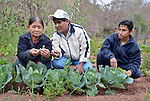 Justina Romero and her husband, Adolfo Torres, get advice from Ricardo Paita in their garden in the Guarani indigenous village of Kapiguasuti, Bolivia. Romero and Torres and their neighbors started the gardens with assistance from Church World Service, supplementing their corn-based diet with nutritious vegetables and fruits. Paita is head of the regional office of the Center for Regional Studies of Tarija (CERDET), a CWS partner.