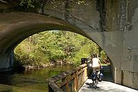 Young woman biking on Whatcom Creek Trail, Maritime Heritage Park, Bellingham, Washington state, USA