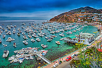 Catalina Island, CA, Avalon, harbor, USA, Santa Catalina, Island, Luxury, Sailboats, Powerboats, Yachts, Moored,