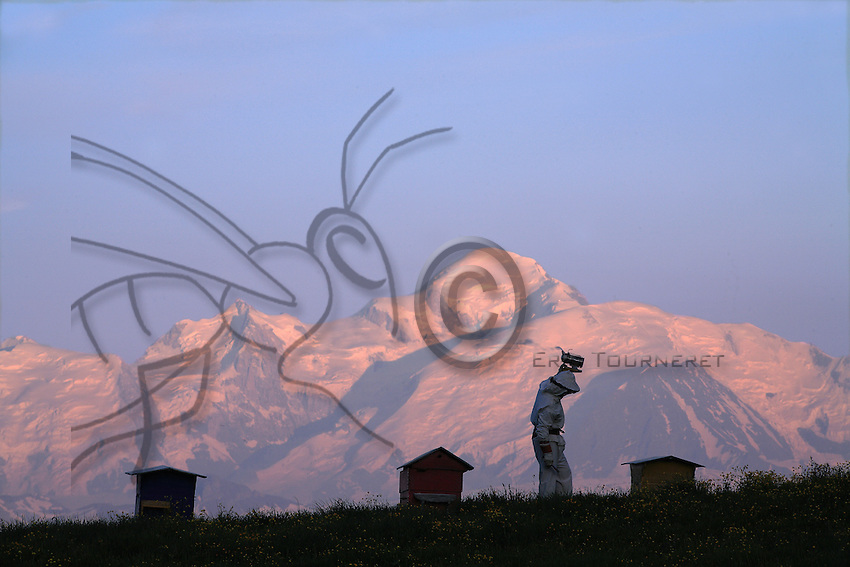 A Beekeeper at work with his smoker in breathtaking landscape of the French Alps, with the Mont Blanc in the background