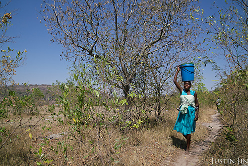 Liliosa, 16, carries a 20-litre bucket of water and walk four kilometres to her home from the nearest borehole, the area's only remaining source of water. She has to walk back and forth twice a day with her baby on her back and forage for food in the wild for her, her baby and her young sister, who is born HIV positive. <br /> <br /> Drought in southern Africa is devastating communities in Zimbabwe, leaving 4 million people urgently in need of food aid. The government declared a state of emergency,. <br /> <br /> Here in Masvingo Province, the country's hardest hit province, vegetation has wilted, livestock is dying, and people are at serious risk of famine. <br /> <br /> Pictures shot by Justin Jin
