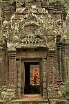 Ta Prohm Kmer temple, Angkor, Siem Reap, Cambodia