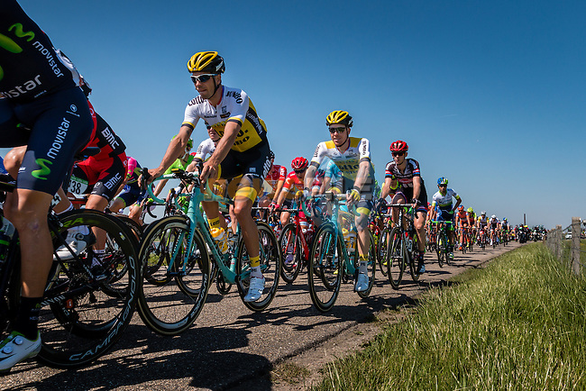 Peloton with KRUIJSWIJK Steven from the Netherlands of Team Lotto NL - Jumbo (NED) on the Waaldijk at Gendt with 180 km to go, stage 3 from Nijmegen to Arnhem running 190 km of the 99th Giro d'Italia (UCI WorldTour), The Netherlands, 8 May 2016. Photo by Pim Nijland / PelotonPhotos.com | All photos usage must carry mandatory copyright credit (Peloton Photos | Pim Nijland)