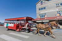 Horse drawn trolley transports tourists in downtown, Ketchikan, Alaska.