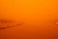 "Baghdad, Iraq, Feb 20, 2003.The Tigris river during a sand storm seen from the ""Martyrs'bridge""."