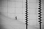 Business Man descends the stairs of the Arche de la Défense in West Paris, France.
