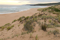 Waitpinga Beach, on the Southern coast of the Fleurieu Peninsula, at sunset. The beach is known for strong rip tides and rough waters which provide excellent fishing. South Australia, Australia.