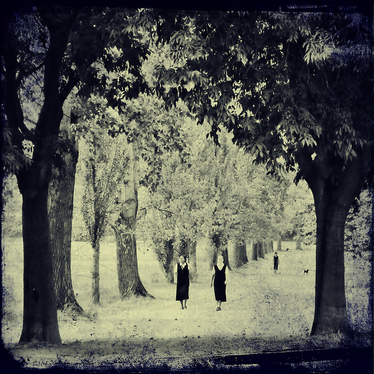 two women walking in a park