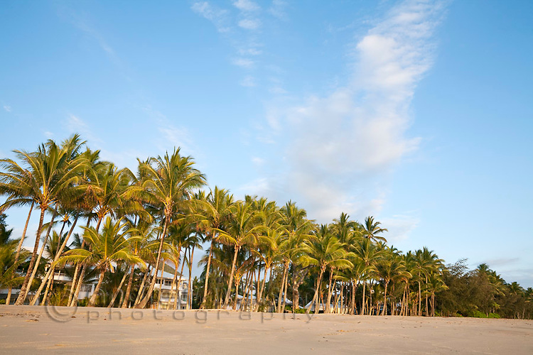 Beach at Palm Cove, Cairns, Queensland, Australia