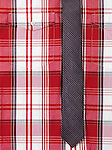 Closeup of a fancy mens red tartan shirt with a skinny stripy necktie background image