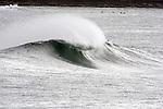 Queenscliff bombie 1400, Sun 16 March 2014
