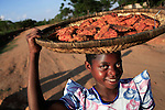 GALUFU, MALAWI NOVEMBER 14: Olive Kagona, age 10, carries fried fish, while walking to a local market on November 14, 2005 in Galufu, Malawi. Most people in the village are poor and hungry, and cannot afford to buy maize or other food at the market. The price is twice as much as the government subsidized prices. The government used to sell subsidized maize and fertilizer but not anymore. Many in the village eat mangoes and even boil unripe ones, as they cannot afford to buy anything else. The harvest was very bad in 2005 and the next one, due in April 2006 I uncertain because of lack of rains and drought. The village has seen an increase in poverty the last few years due to drought and HIV/Aids. Southern Africa has been hit by a severe hunger crisis due to drought and poverty. An ever-increasing HIV/Aids rate adds to the misery. Malawi is one of the worst hit areas and Galufu village is a typical small village that has become victim of this poverty spiral. (Photo by Per-Anders Pettersson)