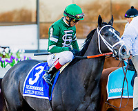 NEW YORK, NY - APRIL 08: Battalion Runner #3, ridden by John Velazquez, in post parade the Wood Memorial Stakes on at Aqueduct Racetrack on April 8, 2017 in the Ozone Park,  New York. (Photo by Sue Kawczynski/Eclipse Sportswire/Getty Images)