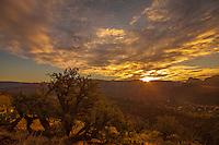 The Desert at Sunrise