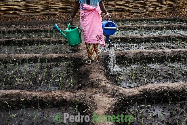 Yaya Balde tiene 60 a&ntilde;os y reside en Ga Santim, un pueblo situado en la regi&oacute;n de Bafat&aacute;, al norte de Guinea Bissau. Est&aacute; casada con Umaru Balde, de 76 a&ntilde;os, que practica la poligamia y tiene una segunda esposa, Uma Djou. Yaya ha tenido nueve hijos, de los que viven cinco. En la aldea, las condiciones de vida son muy humildes: la alimentaci&oacute;n est&aacute; basada principalmente en el arroz y los chamizos no disponen de agua corriente o luz el&eacute;ctrica. Yaya se levanta a las cinco de la ma&ntilde;ana y, despu&eacute;s de la higiene personal, hace el primer rezo musulm&aacute;n del d&iacute;a. Despu&eacute;s ocupa toda su jornada en diferentes labores.<br />  En &Aacute;frica, las mujeres soportan la mayor parte de los trabajos. Ellas se encargan de todas las tareas dom&eacute;sticas, entre las que se incluyen recoger le&ntilde;a en el bosque, dar de comer a los animales, sacar agua en el pozo, moler el cereal de manera tradicional, cuidar de los ni&ntilde;os, hacer la comida y mantener limpias las casas. 25 enero 2014. (c) Pedro ARMESTRE<br /> Yaya Balde is 60 years old and lives in Ga Santim, a small town in the north of Guinea Bissau. She is married with 76-year-old Umaru Balde, who practises the poligamy and has a second wife, Uma Djou. Yaya has had nine children, of whom five are alive. In the village, the living conditions are very humble: the supply is based principally on the rice and the houses don&acute;t have current water or electrical light. Yaya gets up at five o'clock in the morning and, after the personal hygiene, does the first muslim prayer of the day. Later, she occupies all her day in different labors. In Africa, the women support most of the works. They take charge of all the domestic tasks: to gather fuelwood in the forest, to feed to the animals, to extract water in the well, to grind the cereal of a traditional way, to take care of the children, to do the food and to keep the houses clean. 25 enero 2