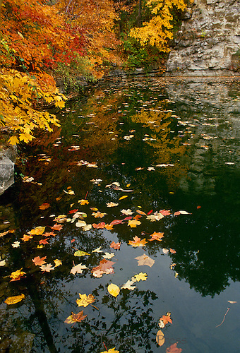 Old quarry filled with water reflecting fall color trees and cliff