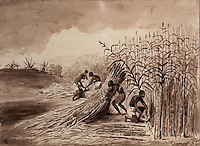 Slaves working at the sugar cane harvest, Chinese ink wash, c. 1800, in the Musee d'Aquitaine, Cours Pasteur, Bordeaux, Aquitaine, France. Picture by Manuel Cohen