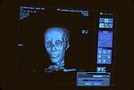 CT scan of Tutankhamun
