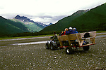 AK: Lake Clark National Park, Alaska, tour for bear viewing   .Photo Copyright: Lee Foster, lee@fostertravel.com, www.fostertravel.com, (510) 549-2202.Image: akbear221