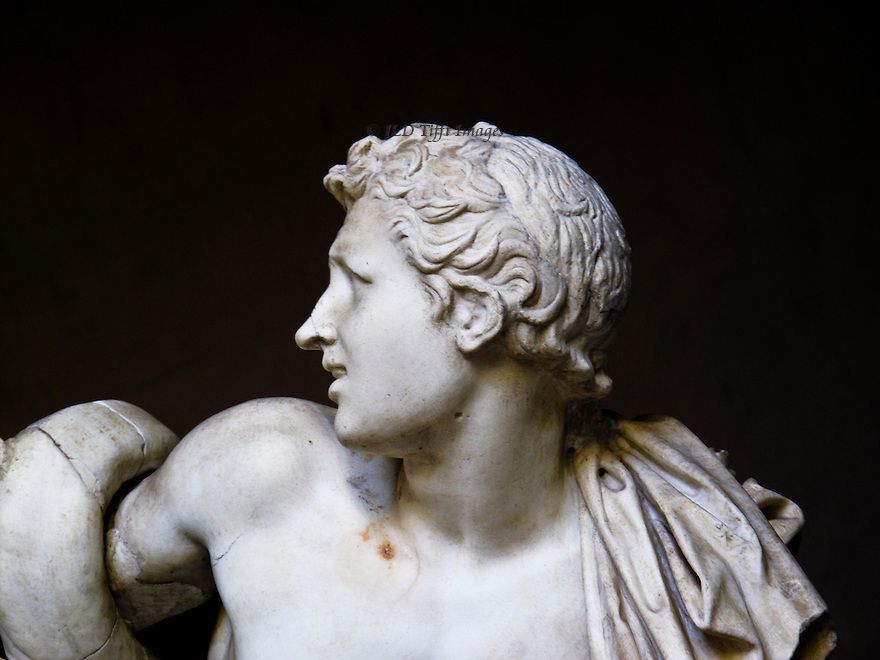 laocoon face - photo #6