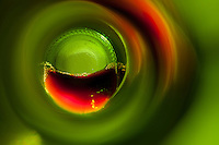 """Beauty at the Bottom: Red Wine 6"" - This is a photograph of a red wine bottle bottle, shot right down inside the mouth of the bottle."