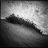 Sand Dunes, Croyde Bay, North Devon | Black and White Photography